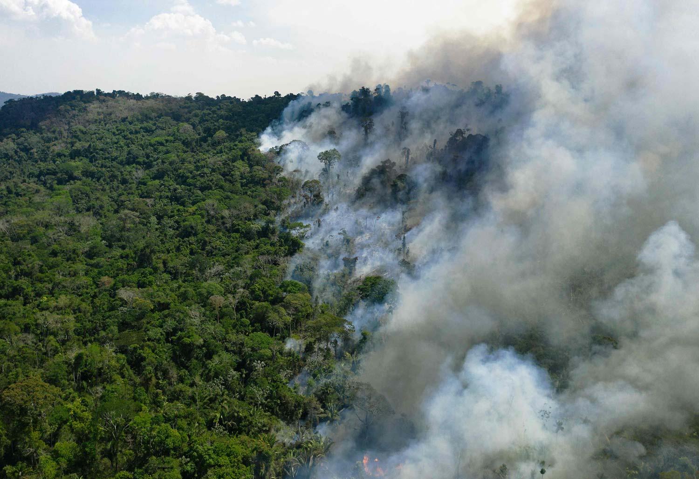 Metsäpalo leviää sademetsässä laajalla alueella. Vasemmalla vielä vaurioitumatonta metsää. Oikea puoli kuvasta sankan savun peitossa.